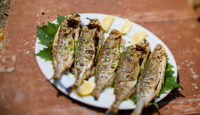 Tamaris-Charter-grilled-fish-gastro-tour_1600x1067.jpg