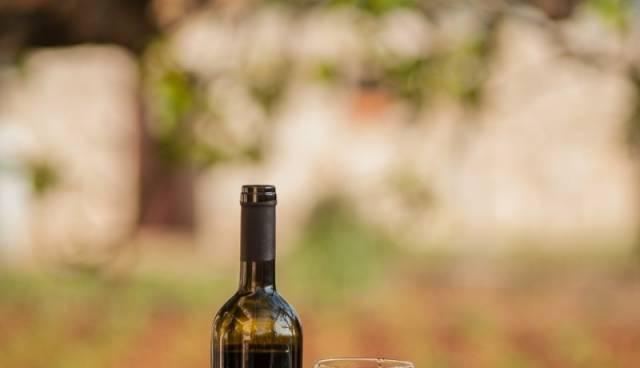 Tamaris-Charter-wine-tasting_800x1200.jpg